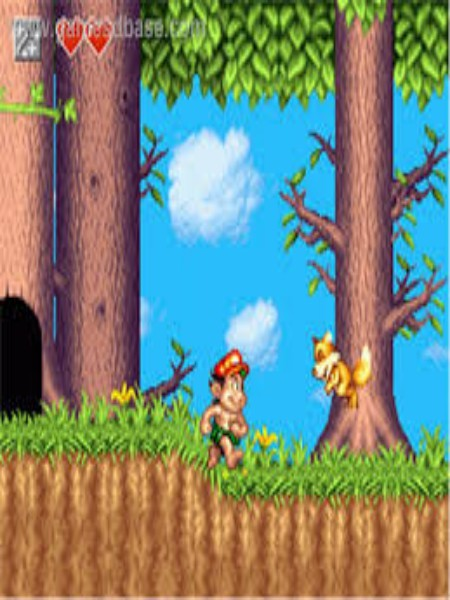Download Adventure Island Highly Compressed