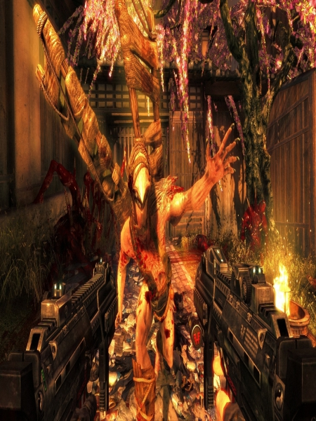 Download Shadow Warrior Special Edition Game For PC