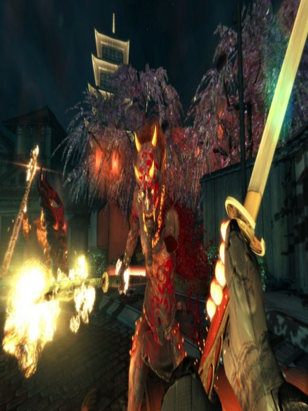 Download Shadow Warrior Special Edition Highly Compressed