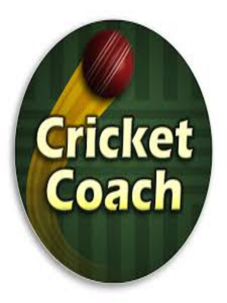 Cricket Coach 2014 PC Game Free Download